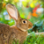 brown rabbit sitting in flower garden stock photo © icefront