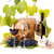 白 · 赤ワイン · 眼鏡 · ボトル · ブドウ - ストックフォト © icefront