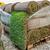 green new turf grass roll stock photo © ifeelstock