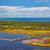 mediterráneo · forestales · panorama · pino · panorámica · vista - foto stock © igabriela