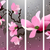 távolkeleti · stílus · festmény · cseresznyevirág · tavasz · három - stock fotó © igor_shmel