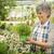 jardinage · été · femme · herbes · heureux · différent - photo stock © iko