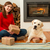 me and my dog love gifts stock photo © iko