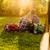 mező · fű · tökéletes · naplemente · tavasz · fa - stock fotó © iko