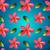 güzel · renkli · ebegümeci · çiçekler · çiçek · tropikal - stok fotoğraf © ikopylov