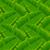 bezszwowy · zielone · bambusa · lasu · biały · tekstury - zdjęcia stock © ikopylov