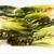 kínai · zöldség · kettő · felső · kilátás · izolált - stock fotó © ildi