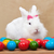 Cute easter bunny sitting iamong colorful eggs stock photo © ilona75