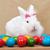 aranyos · húsvéti · nyuszi · ül · színes · tojások · asztal - stock fotó © ilona75