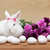 Spring simbols - white bunny waiting for easter stock photo © ilona75