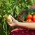 vrouw · groenten · tuin · man · portret - stockfoto © ilona75