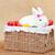 sevimli · easter · bunny · oturma · sepet · renkli · yumurta - stok fotoğraf © ilona75