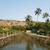 два · мостами · реке · Гоа · Индия - Сток-фото © imagedb