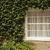 ev · kapalı · sarmaşık · oxford · oxfordshire · İngiltere - stok fotoğraf © imagedb