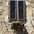 low angle view of a window box stock photo © imagedb