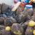 grup · insanlar · sokak · pazar · yeni · delhi · Hindistan · kadın - stok fotoğraf © imagedb