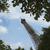 görmek · kule · Eyfel · Kulesi · Paris · Fransa - stok fotoğraf © imagedb