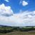 manzara · Toskana · tipik · bahar · doğa · güzellik - stok fotoğraf © imagedb
