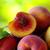 maduro · pêssegos · verde · comida · fruto · estúdio - foto stock © inaquim