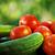 kırmızı · domates · şube · siyah · plastik - stok fotoğraf © inaquim