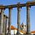 Roma · tapınak · Portekiz · unesco · dünya · miras - stok fotoğraf © inaquim
