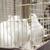 witte · duif · kooi · vergadering · top - stockfoto © inxti