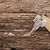single key on a wooden table stock photo © inxti