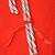 конфеты · тростник · лук · красный · зима - Сток-фото © inxti