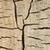 close up wooden cut texture stock photo © inxti