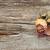 secar · rosa · madeira · velha · cópia · espaço · flor · madeira - foto stock © inxti