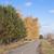 autumn asphalt road stock photo © inxti