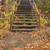 old wooden stairs outdoors stock photo © inxti