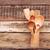 kitchen wooden utensils in retro bucket over wooden background stock photo © inxti