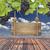 madeira · assinar · blue · sky · grama · verde · azul - foto stock © inxti