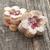 eigengemaakt · biscuits · noten · rozijnen · witte · plaat - stockfoto © inxti