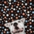 dog against polka dot background stock photo © iofoto