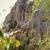 hadas · corriente · canón · Vietnam · naturaleza · paisaje - foto stock © iordani