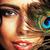 tavuskuşu · tüy · desen · bahar · göz · dans - stok fotoğraf © iordani