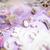 ékszerek · asztal · lány · kicsi · rendetlenség · kozmetikai - stock fotó © iordani