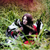 femme · Husky · maison · Homme · blanche · animaux - photo stock © iordani
