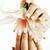 schoonheid · handen · manicure · bloem · lelie - stockfoto © iordani