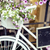 flower in basket of vintage bicycle on vintage wooden house wall summer street cafe stock photo © iordani