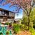 zwarte · houten · moderne · huis · voorjaar - stockfoto © iriana88w