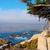 Big Sur California, USA stock photo © iriana88w