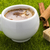 coffee hot cup and cinnamon sticks with cubes brown cane sugar on the grass stock photo © ironstealth