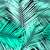 hoja · de · palma · siluetas · tropicales · hojas · playa - foto stock © ivaleksa