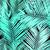 tropische · Blauw · palmboom · bladeren · silhouet - stockfoto © ivaleksa