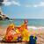 zee · kleurrijk · bloemen · strand · landschap - stockfoto © ivonnewierink