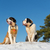 propietarios · rescate · perro · nieve · grande · familia - foto stock © ivonnewierink