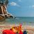 beach bags stock photo © ivonnewierink